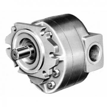 Goldcup P11 P14 P14p P24 P24p P30 P30p Denison Hydraulic Piston Pump